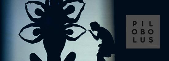 Pilobolus: definiţia iubirii te duce la spectacolul umbrelor
