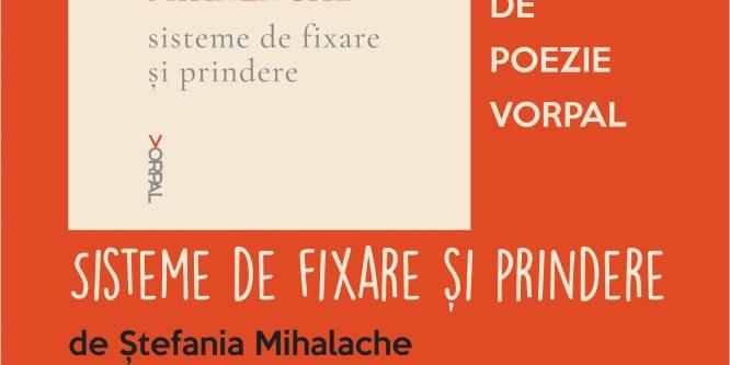 Ștefania Mihalache: Sisteme de fixare și de prindere, la Timișoara