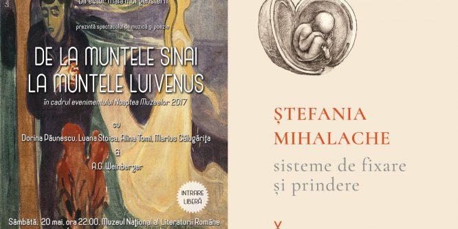 Versurile Ștefaniei Mihalache într-un spectacol de teatru la Noaptea muzeelor